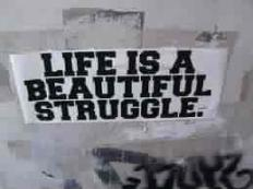 life-is-a-beautiful-struggle